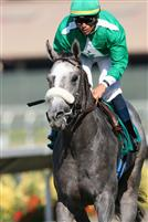 Alfarabi breaks his maiden at Del Mar