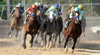 Bodemeister wins the 2012 Arkansas Derby