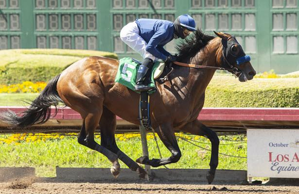 First-out winner Cezanne, Creed handle allowance debuts