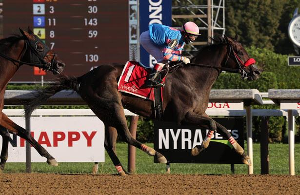 Come Dancing looks to go out in glory with Breeders' Cup F&M Sprint