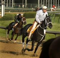 Eight Belles works before the Kentucky Derby with trainer Larry Jones up