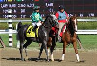 Gift Box, Curlin Stakes