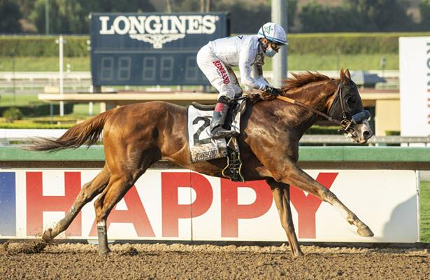 Improbable is now America's top-ranked Thoroughbred