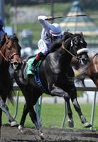 Mr. Hot Stuff runs third to Pioneerof The Nile in the Santa Anita Derby