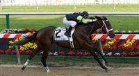 Payton d'Oro wins the Black-Eyed Susan Stakes