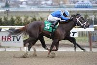 Mamdooha got her nose down on the wire after a ferocious battle with Vero Amore through the final yards to take Sunday's $100,000 Ruthless at Aqueduct Racetrack and earn her third straight victory.