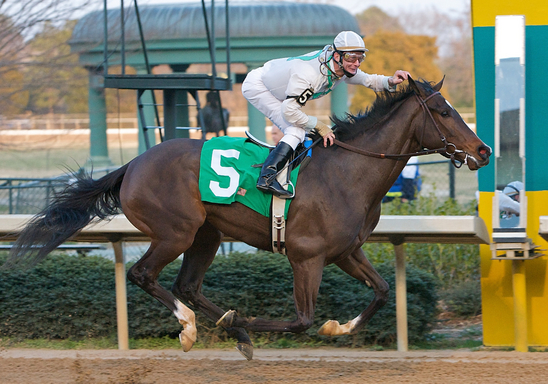 Rachel Alexandra captures the Martha Washington