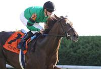 Rogue Romance with Julien Leparoux wins The Bourbon (grIII) at Keeneland Race Course. 10.10.2010..photo Ed Van Meter