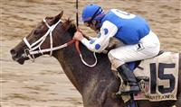 Smarty Jones and Stewart Elliott win the Kentucky Derby