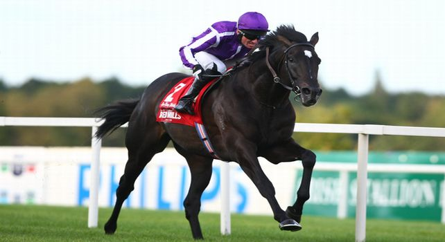 03.09.2011 The Irish Champion Stakes from Leopardstown. The Aidan O'Brien trained So You Think ridden by Seamus (Seamie) (J A) Heffernan win the Group 1 Red Mills Irish Champion Stakes