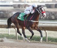Songfoya wins at Hawthore 12/30/12