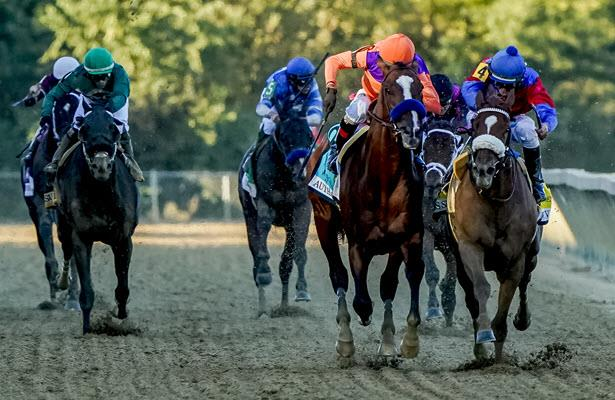 What we learned: Great ride results in Preakness win
