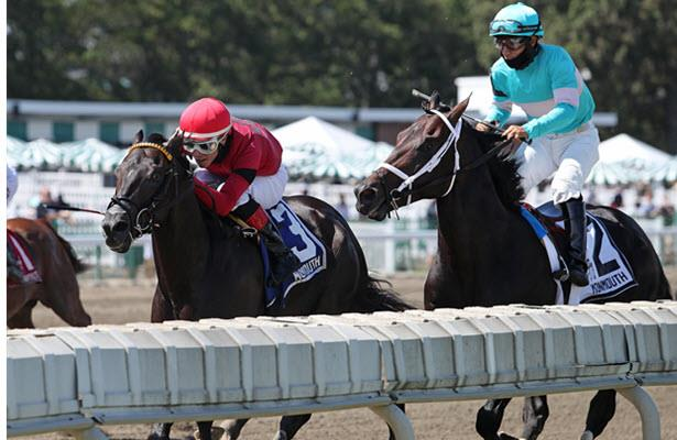 Warrior's Charge wins Iselin following DQ of Pirate's Punch