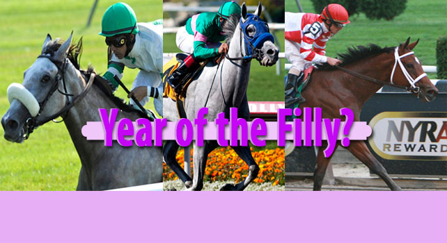 Year of the Filly