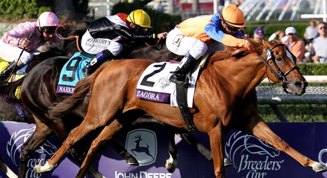 Zagora, ridden by Javier Castellano, wins the Breeders' Cup Filly & Mare Turf on Ladies' Day for the Breeders' Cup at Santa Anita Park in Arcadia, Caifornia on November 2, 2012.