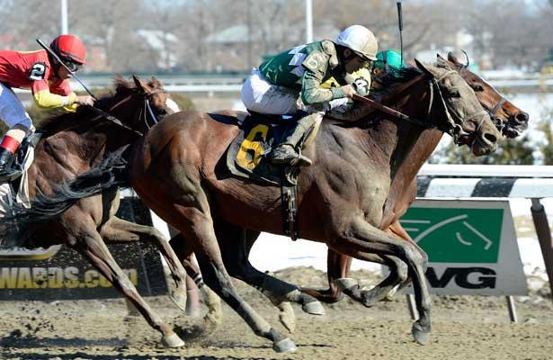New York-breds shine at Belmont Park on Big Apple Showcase Day